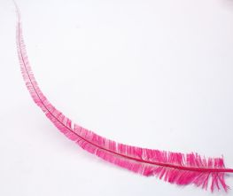 Long Cut Magenta Pink Ostrich Feather